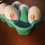 Great Day Farms Eggs